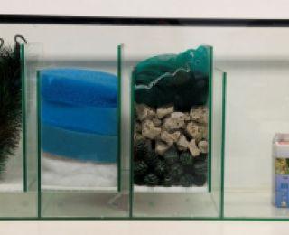 Bioloog compleet deluxe 80x35x40cm + pomp Eheim 1000 liter/h