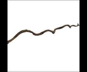 Twisted liana 100cm