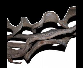 Liaan Gekruld 200cm 2-3 cm dik