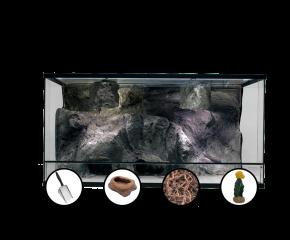 3 Luipaardgekko starter set 3D Rock