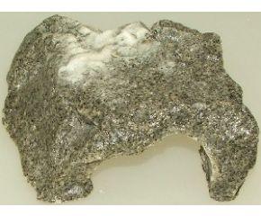 Dragon Kleindier Grot Dolomit S
