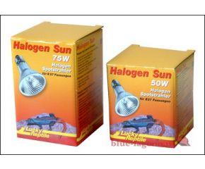 Lucky Reptile Halogeen Sun 50W