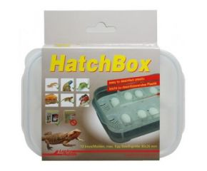 Lucky Reptile Hatch Box