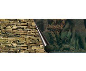 Foto Achterwand 80x40cm Tree+Rock