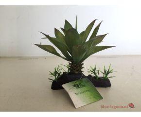 RepTech Terrarium Plant Thick Succulent