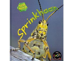 Kleine Beestjes - Sprinkhaan